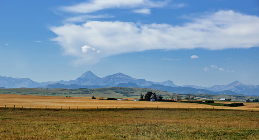 House of Parly passes 'no consent' Land Reform – ANC lags targeted repatriation