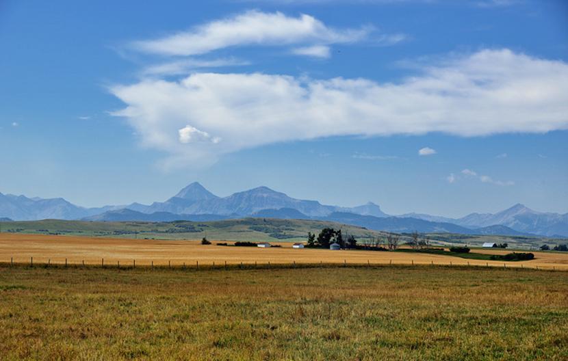 land-reform