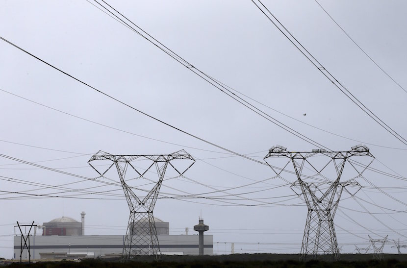 Pylons carry power from South Africa's Koeberg nuclear power plant near Cape Town August 13, 2015. Fears are growing in South Africa that agreements to build nuclear power plants that could be the most expensive procurement in the country's history will be made behind closed doors, without the necessary public scrutiny. Construction on the first plant is due to start next year, breakneck speed compared with the years of regulatory and environmental checks for nuclear projects in countries such as Britain and the United States. Picture taken August 13, 2015. REUTERS/Mike Hutchings