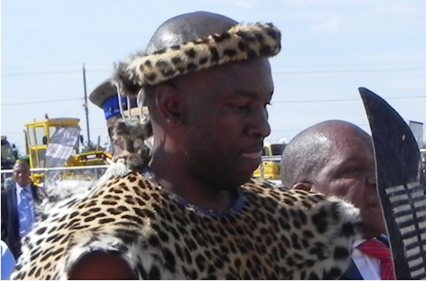 South Africa's youthful new Minister of Mines, Mosebenzi Zwane. Like his boss, President Jacob Zuma, he has a penchant for tradition, including wearing leopard skins.