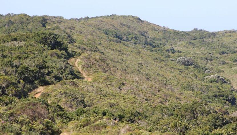Thyspunt Nature Reserve