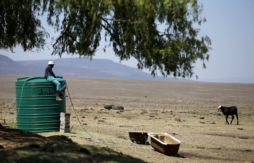A farm worker sits on a water tank as he supplies his livestock with water at a farm outside Utrecht, a small town in the northwest of KwaZulu-Natal, November 8, 2015. Cattle are the traditional asset by which Nampie Motloung, a subsistence black South African farmer, has long measured his wealth. But a blistering drought has made them a liability. Picture taken November 8, 2015. To match SAFRICA-DROUGHT/ REUTERS/Siphiwe Sibeko