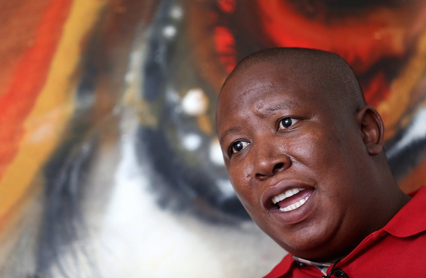 Julius Malema, leader of the leftist Economic Freedom Fighters (EFF) party speaks during an interview with Reuters in Johannesburg, January 27, 2016. Malema, who seeks nationalisation of mines and land and the curbing of white economic power, called on other opposition parties to unite with his Economic Freedom Fighters (EFF) to break the grip of the ruling party at municipal polls this year. REUTERS/Siphiwe Sibeko