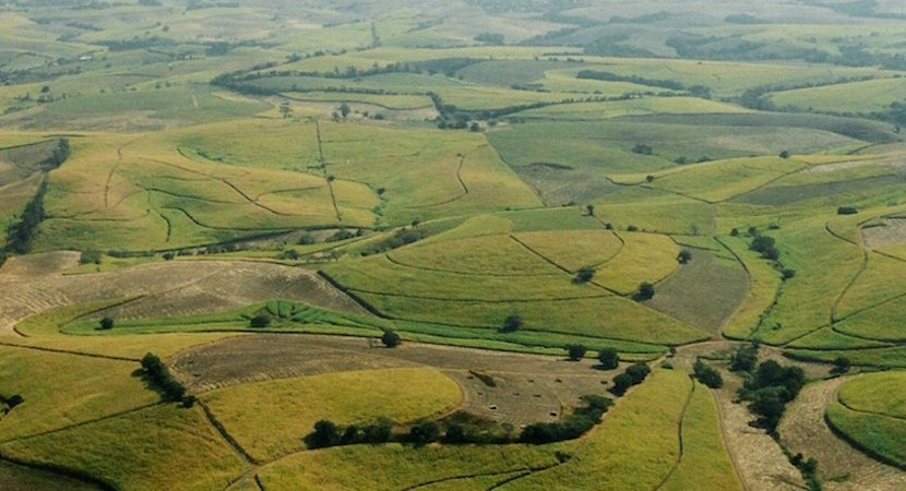 Land reform that works – how the powerful have captured land reform and how to take it back