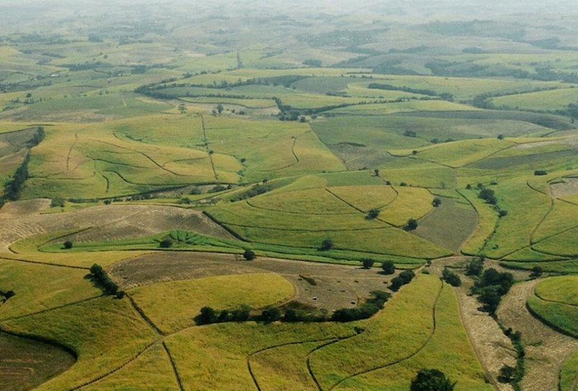 land_reform_SA_farming