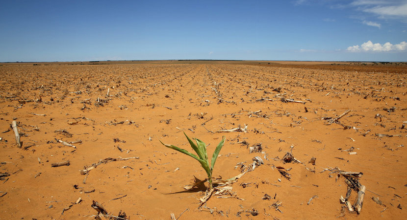 Nothing seems sacred anymore as R1bn drought relief fund joins captured list – Herbst