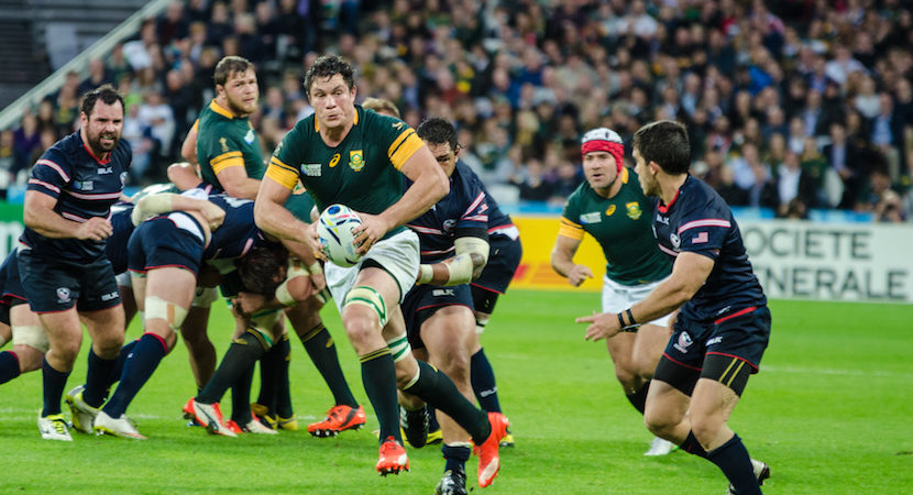 Cronje, Louw back for the Boks against Wallabies in Bloemfontein
