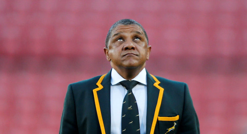 Coetzee says he's disappointed, but promises Boks will emerge stronger