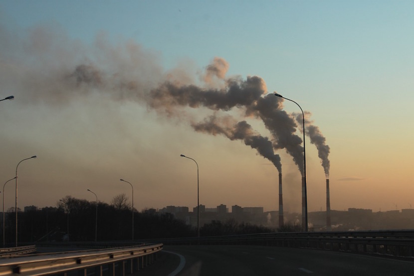 carbon profile