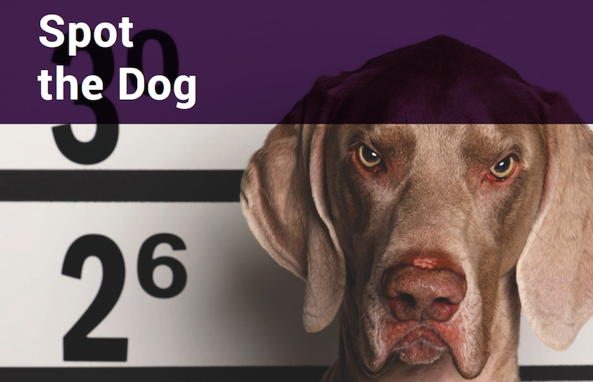 Worst investment fund managers: UK dogs exposed - BizNews com
