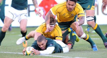 Springboks go for seven wins in a row over the Wallabies at Loftus