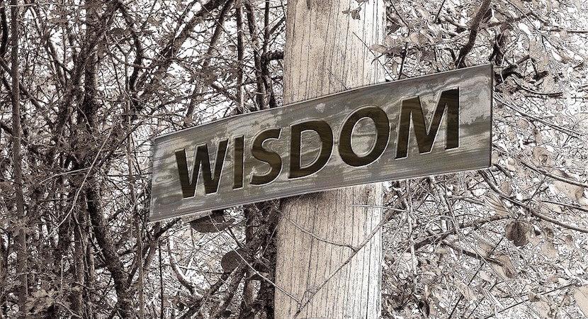 Zimbabwean insights: SA awash in knowledge, huge wisdom deficit