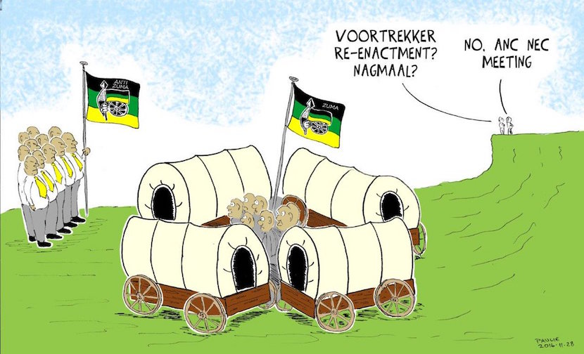 The ANC NEC Lager. Cartoon published courtesy of @PaulieCartoons