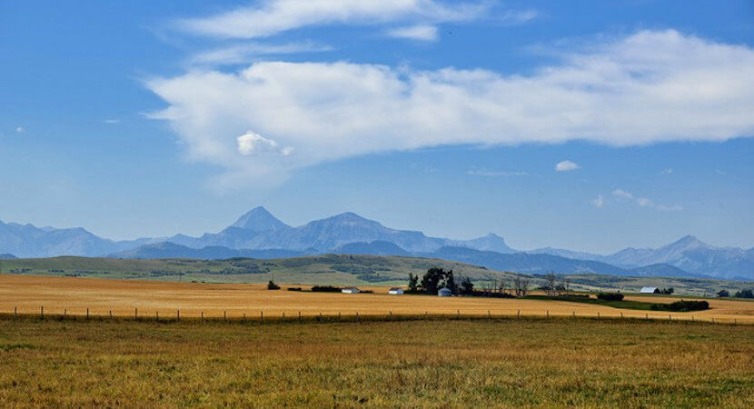 10-point plan to effect orderly, equitable land reform in SA