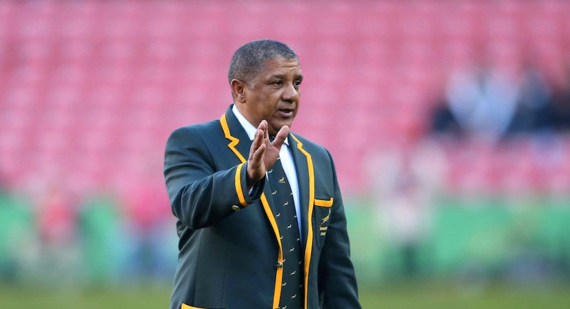 Confirmed – Allister Coetzee lives to fight another season as Springbok coach