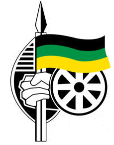 ANC flag - biznews