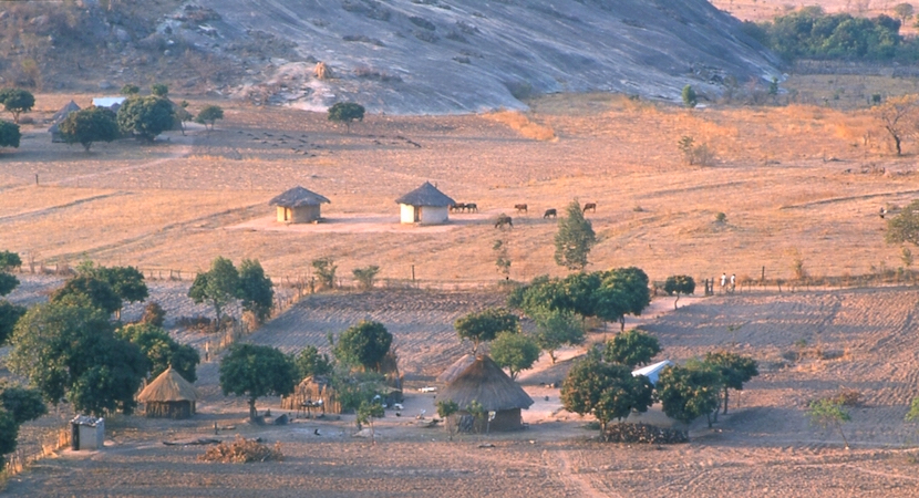 Image result for derelict farms in zimbabwe