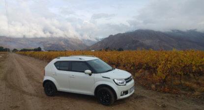 Suzuki Ignis: New king of the mini crossover