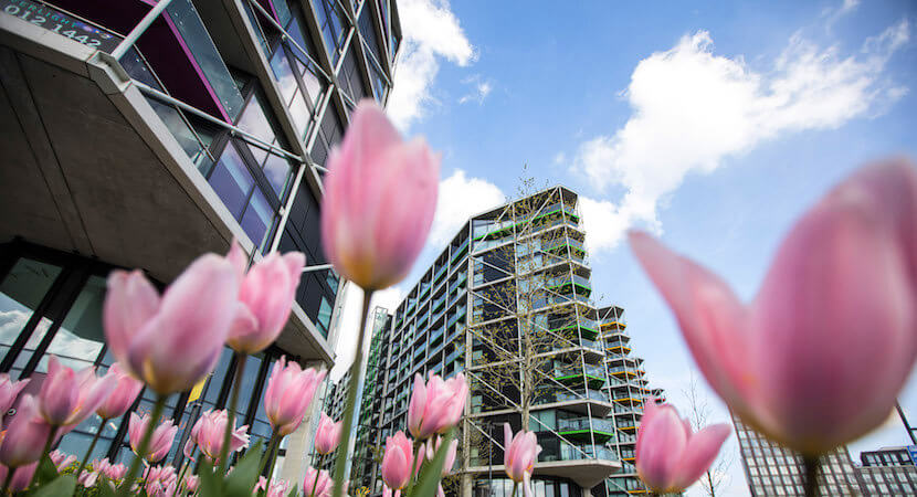 London property developers panic as investors dry up – but bargain-hunters wait in wings