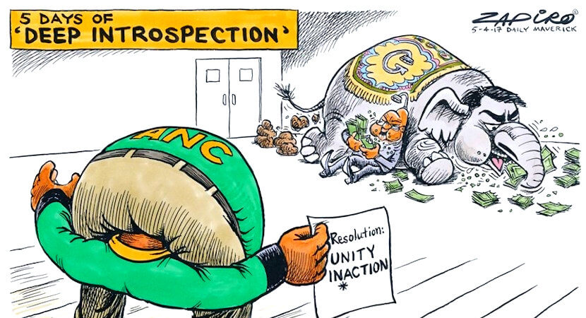 Ed Herbst: Ramaphosa vs Dlamini-Zuma – ANC's race to the bottom?