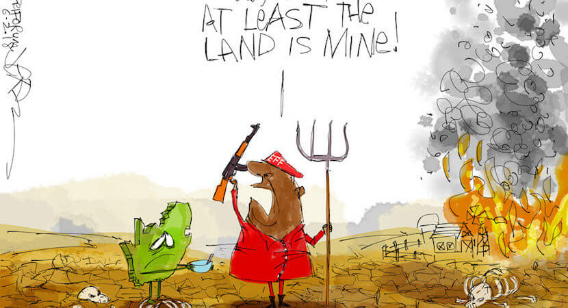 How world sees SA: Zimbabwe-style land grabs will NEVER happen