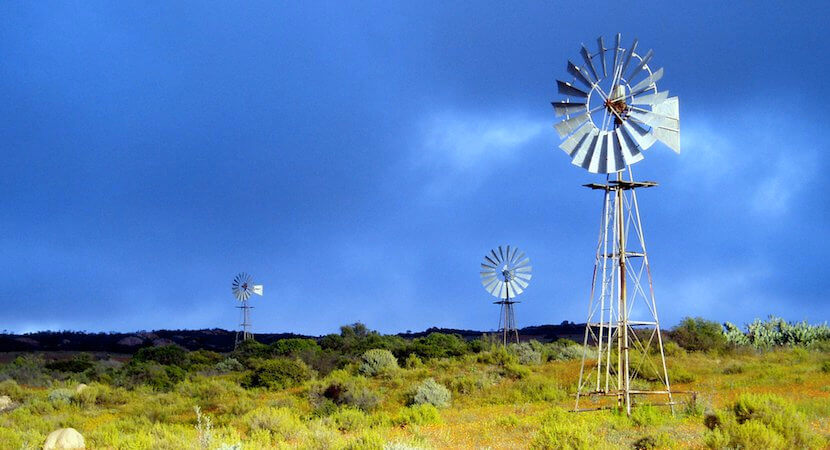Land expropriation without compensation gets Constitutional review – Rand takes knock