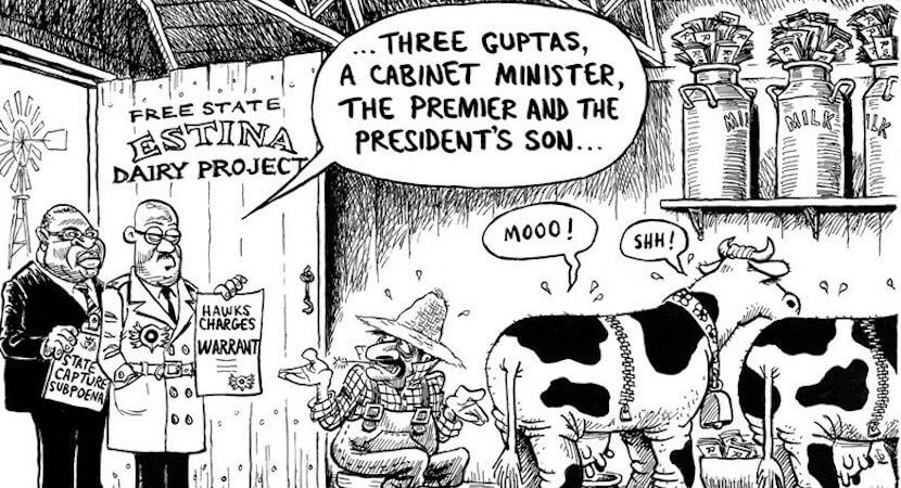 Sizing up Estina Dairy: Money stolen by Guptas could have funded 5440 students