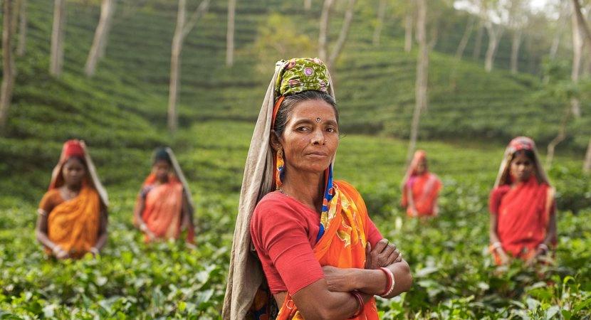 india field worker informal economy