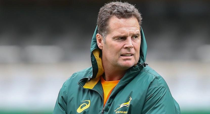 Rassie Erasmus, SA Rugby
