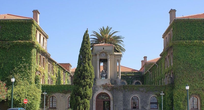 University of Cape Town, UCT