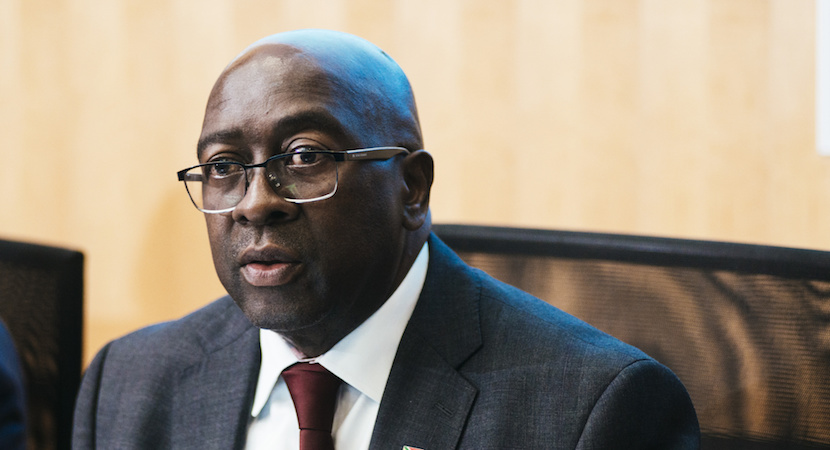 Nhlanhla Nene, South Africa's finance minister
