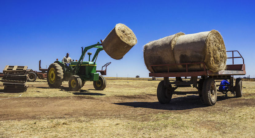 Livestock faming, land seizures