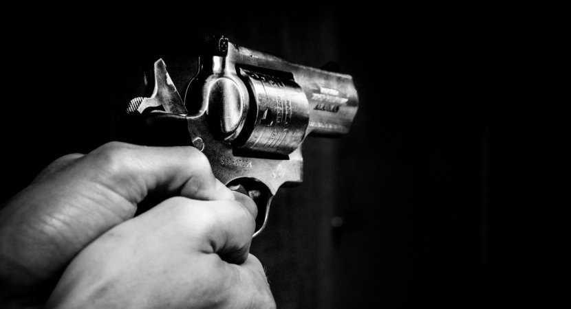 firearm licence