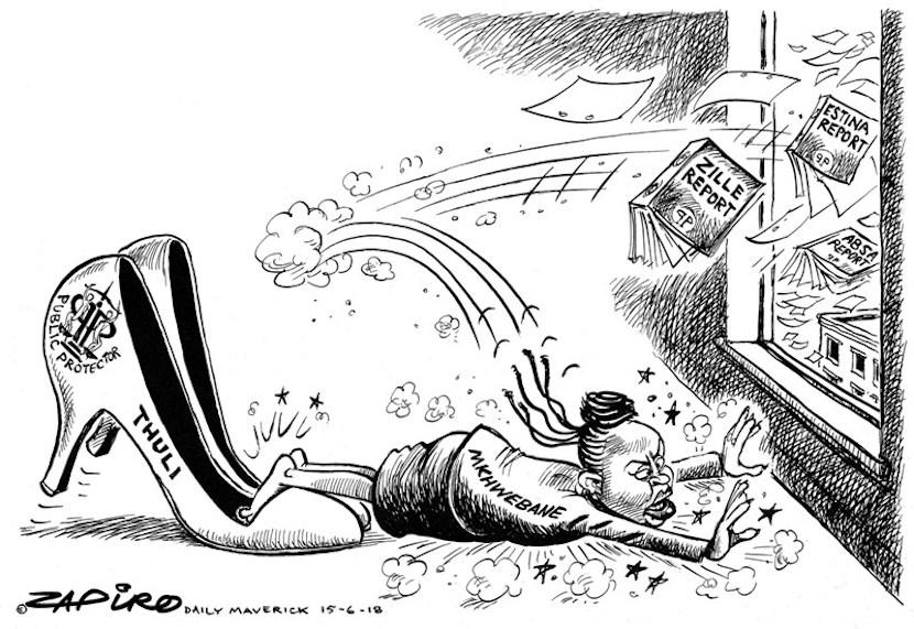 Busisiwe Mkhwebane, Public Protector