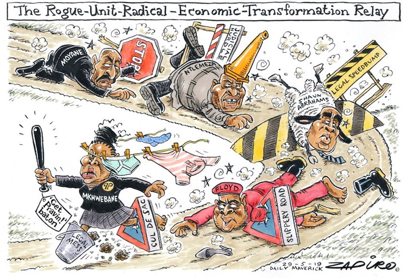 Busisiwe Mkhwebane, SARS, Zapiro