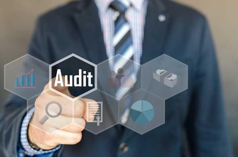 audit, auditing