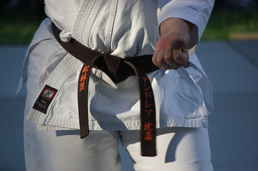 karate, martial arts