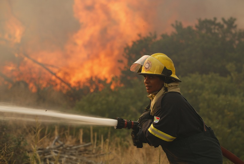 Cape Town, Tokai forest, fire