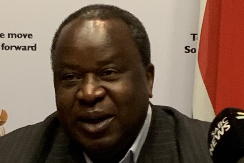 Tito Mboweni, Treasury, 2019 mini budget