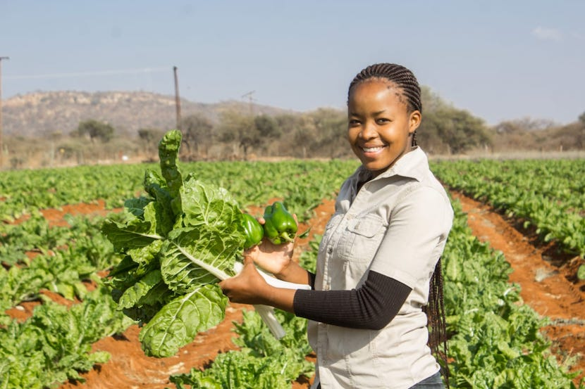SA farmer