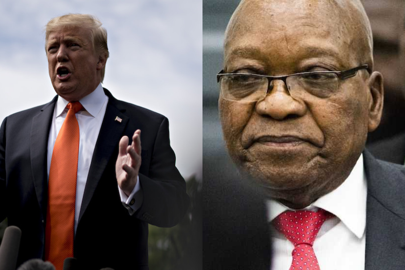 Zuma, Trump: Subverting democracy is tough – especially when it comes back to bite you, says Southall thumbnail
